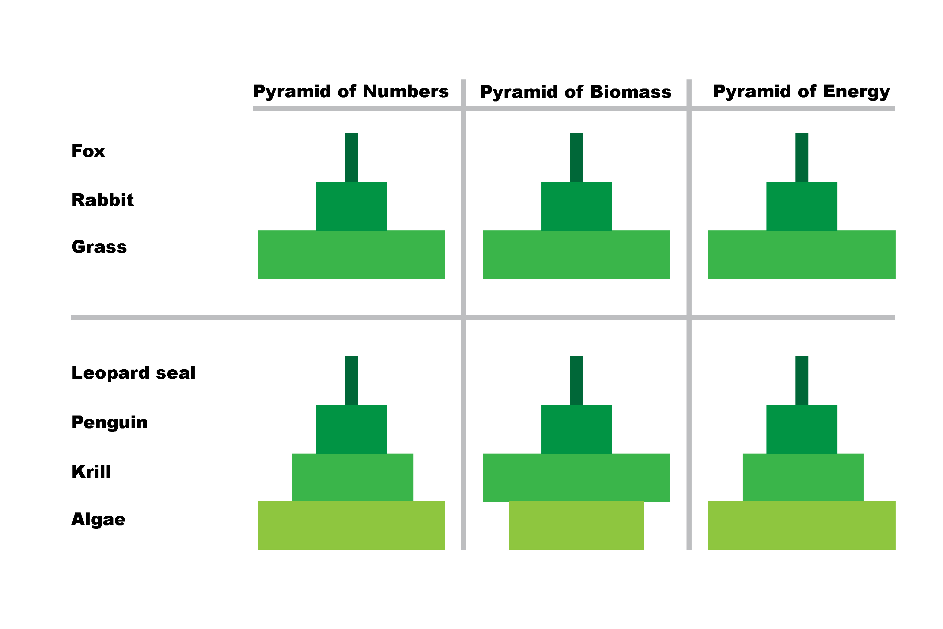 Biomass is the total mass multiplied by the population