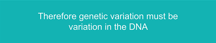 Text to remember that genetic variation is the variation of DNA