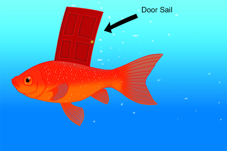 Mnemonic depicting the dorsal fin of a fish